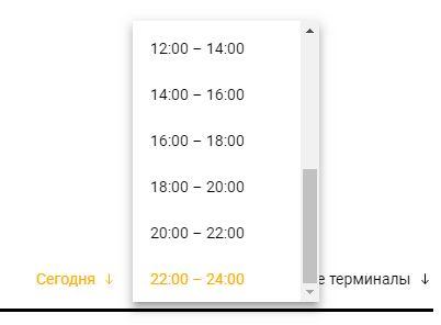 Параметры поиска рейсов на онлайн табло аэропорта Шереметьево